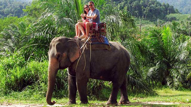 Excursions - National Parks, Temple Tours, Elephant Trekking
