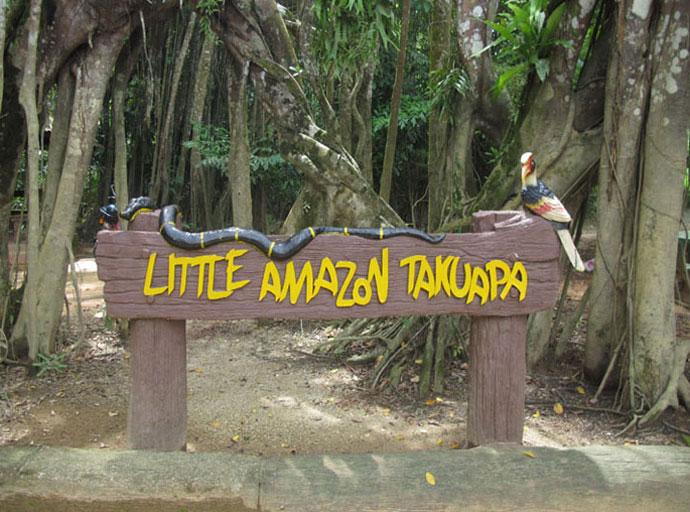 Little Amazon Takuapa