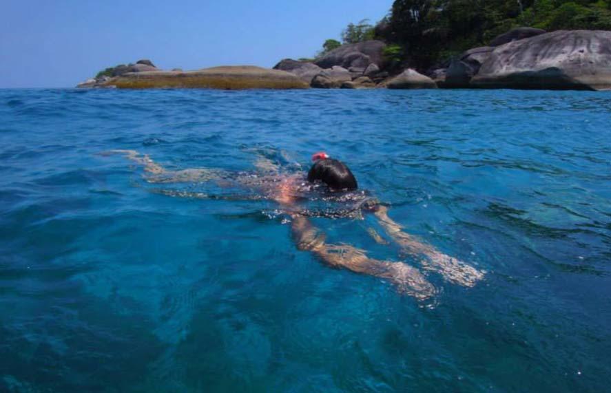 Das Safariboot MV Amapon bringt Sie zu einigen der bekanntesten Tauchplätze der Welt