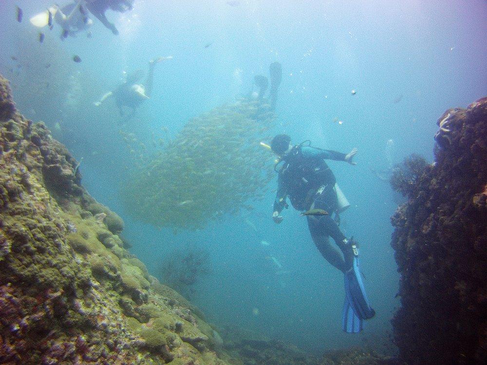Tauchen in der Nebensaison mit Sea Turtle Divers