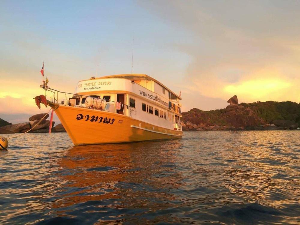 Sea Turtle Divers Tauchsafari Thailand mit der MV Amapon