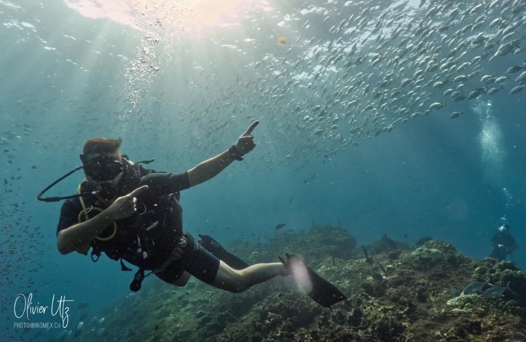Richelieu Rock Diving - Khalo Lak - Sea Turtle Divers